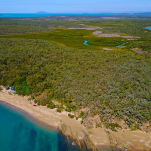 cape-palmerston-beach-camp-bush