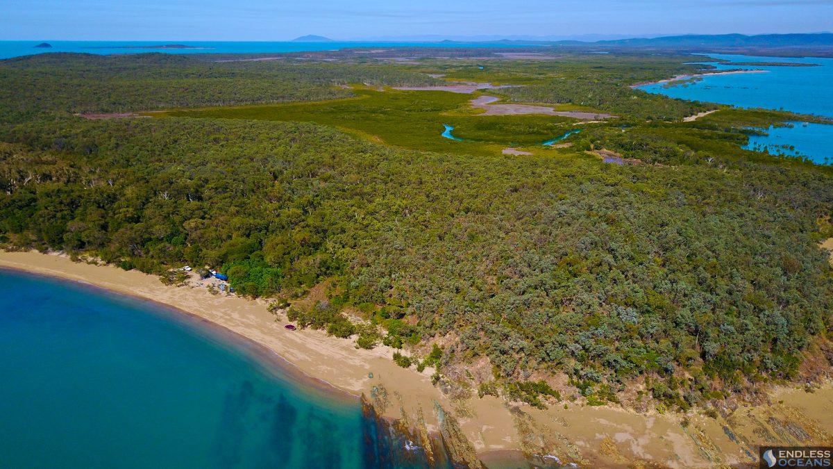cape-palmerston-beach-camp-bush