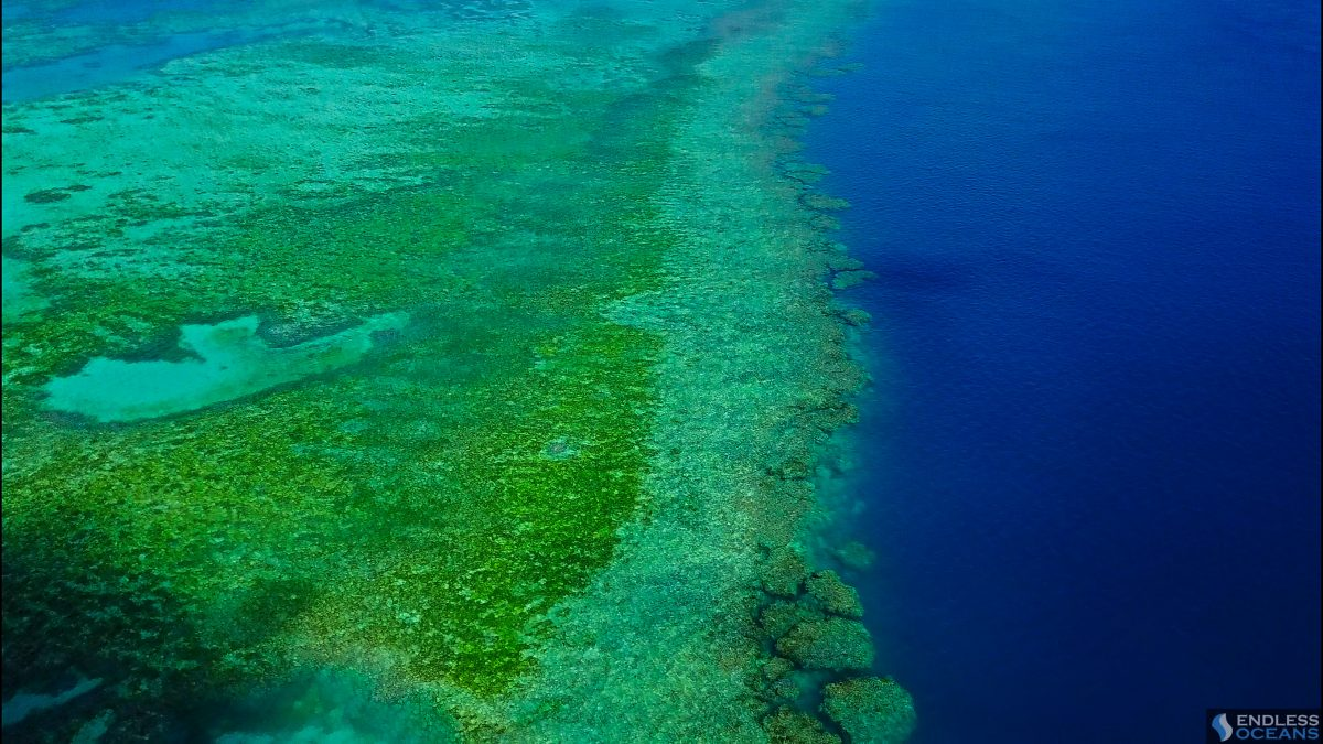 Beautiful aerial shot of the Great Barrier Reef of the coast of Whitsunday Islands