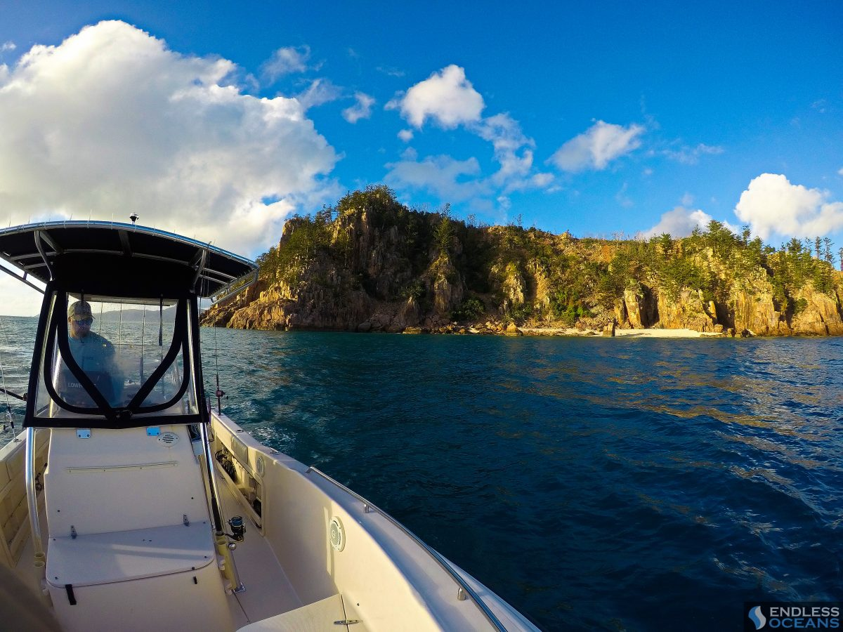 hayman-island-grady-white-boat