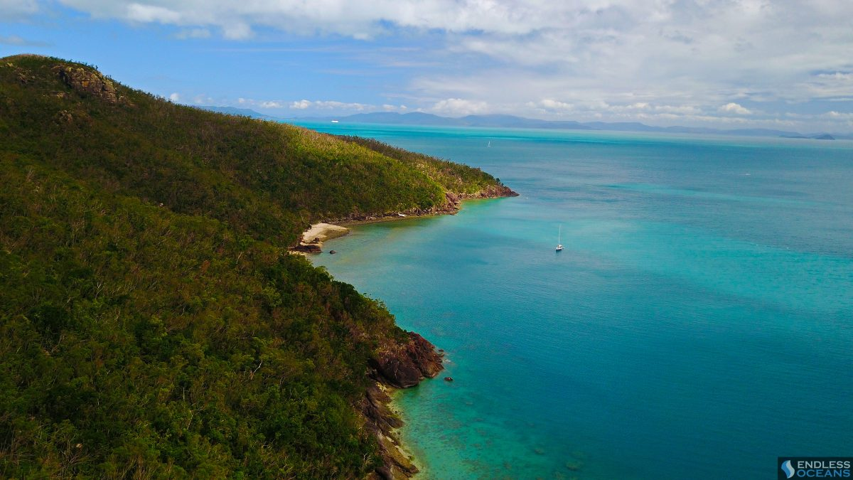 hook-island-rainforrest-meets-ocean