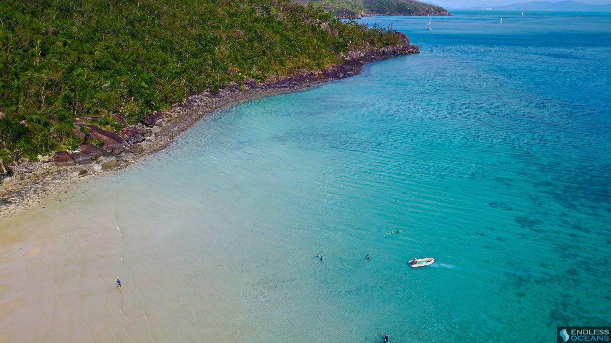 hook-island-snorkelling