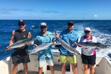 Four Spanish Mackerels